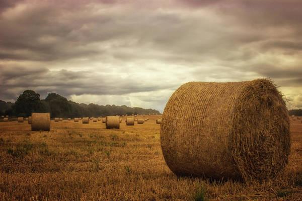 Bales Photograph - Hay Bales by Martin Newman
