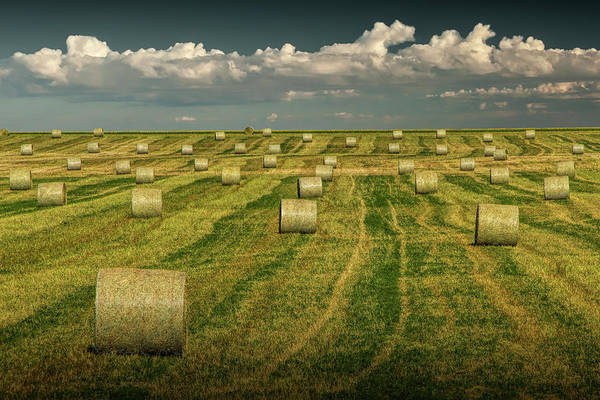 Photograph - Hay Bales On A Farm In Alberta Canada by Randall Nyhof