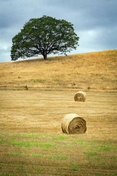 Photograph - Hay Bales On The Hillside by Rick Strobaugh