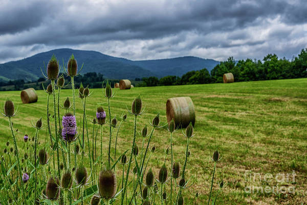 Photograph - Hay Bales Stormy Sky by Thomas R Fletcher