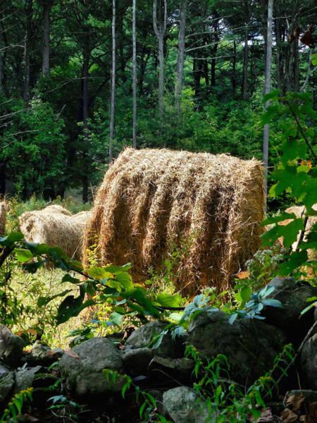 Barley Painting - Hay Bay Rolls 2 by Jeelan Clark