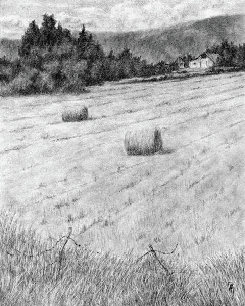 Drawing - Hay Harvest by David King