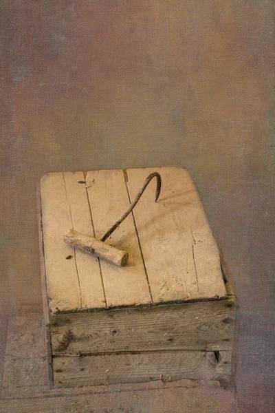Photograph - Hay Hook by Tom Singleton