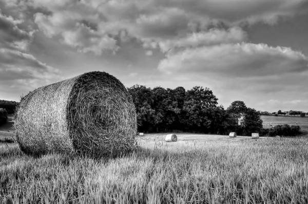 Photograph - Hay Race Track by Jeremy Lavender Photography