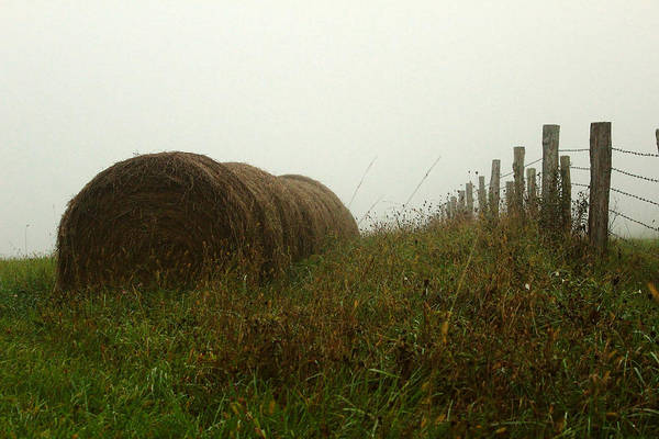 Wall Art - Photograph - Hay Roll by Kevin Wheeler