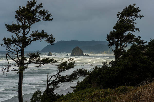 Photograph - Haystack Rock And Silhouettes by Robert Potts