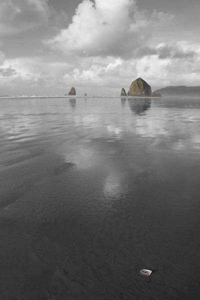 Photograph - Haystack Shell by Dylan Punke