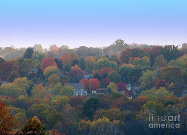 Photograph - Hazy Autumn by Gena Weiser