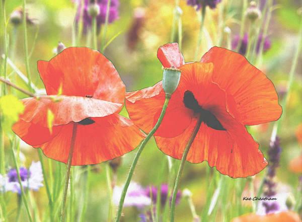Poppies Digital Art - Hazy Poppies And Field by Kae Cheatham