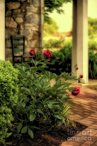 Wall Art - Photograph - Hazy Summer Afternoons On The Porch by Lois Bryan