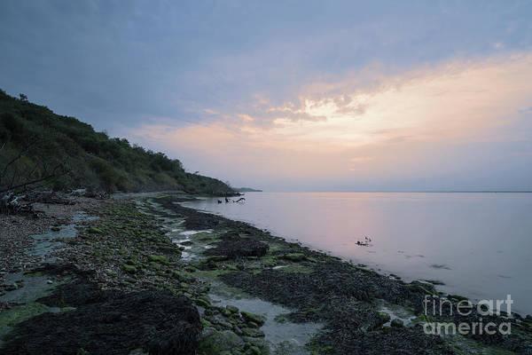 Photograph - Hazy Sunset by Clayton Bastiani