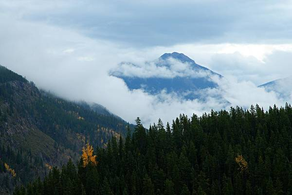 Photograph - Head In The Clouds by Larry Ricker