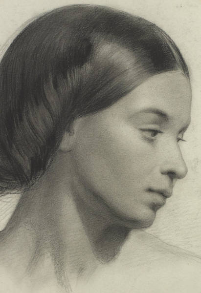 Pencil Drawing Painting - Head Of A Girl by Anonymous