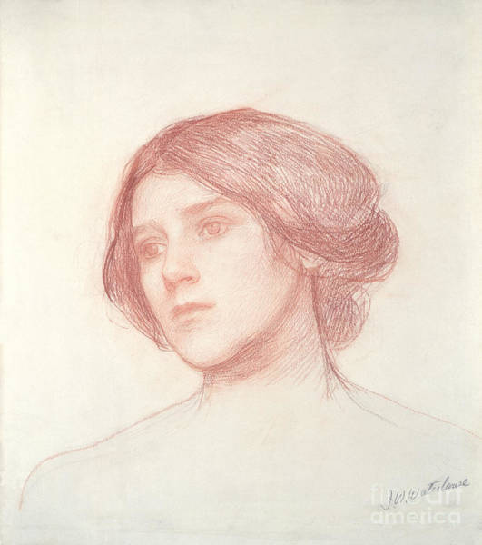 William Drawing - Head Of A Girl by John William Waterhouse