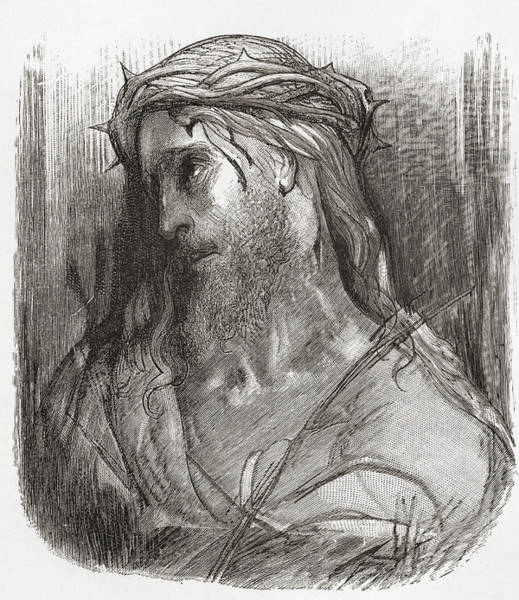 Dor Drawing - Head Of Christ, After The Original by Vintage Design Pics
