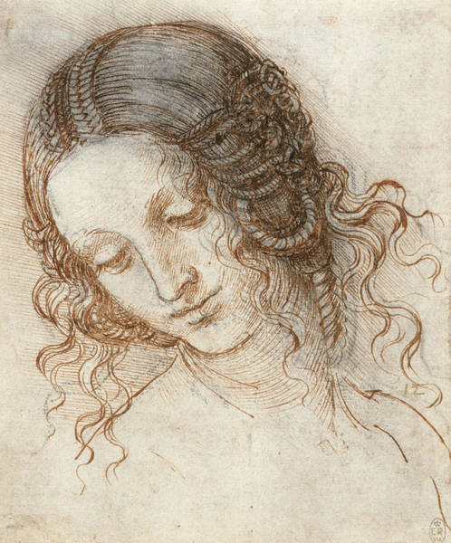 Drawing - Head Of Leda by Leonardo da Vinci