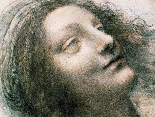 Madonna Drawing - Head Of Virgin by Leonardo Da Vinci