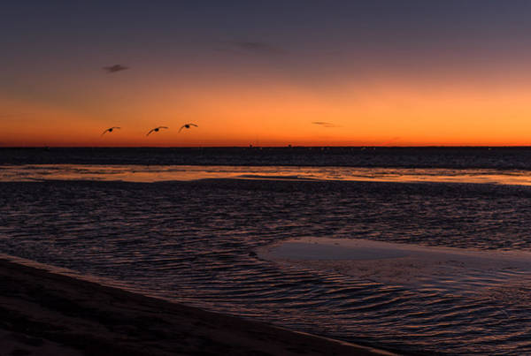Photograph - Heading Home Sunset Seaside Nj by Terry DeLuco