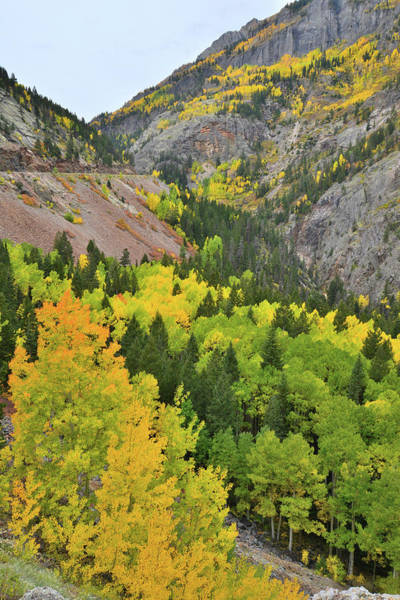 Photograph - Heading Up Ouray Canyon by Ray Mathis