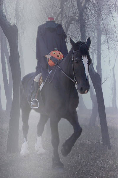 Photograph - Headless Horseman by Christine Till