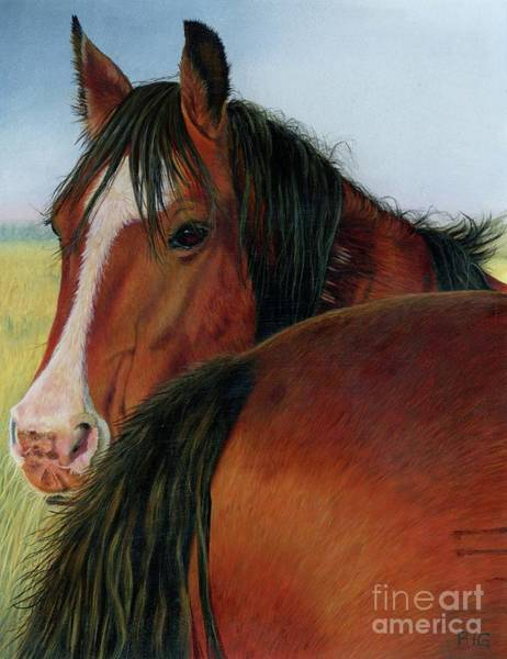 Painting - Heads Or Tails by Rosellen Westerhoff