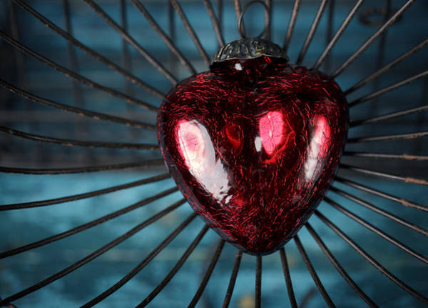 Traps Photograph - Heart In Cage by Nailia Schwarz