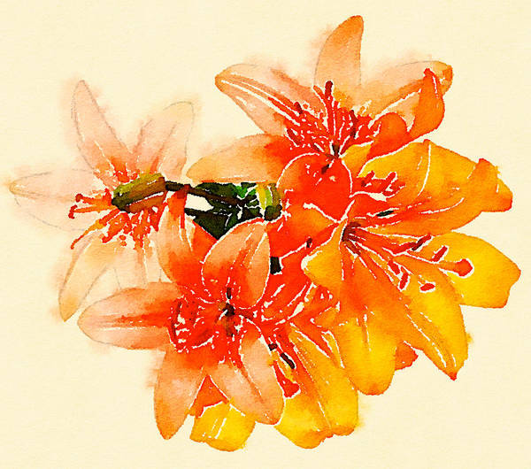 Digital Art - Heart Of The Lillies by Lisa Schwaberow