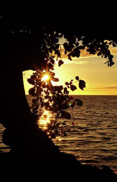 Photograph - Heart Of The Sunset by Pamela Walton