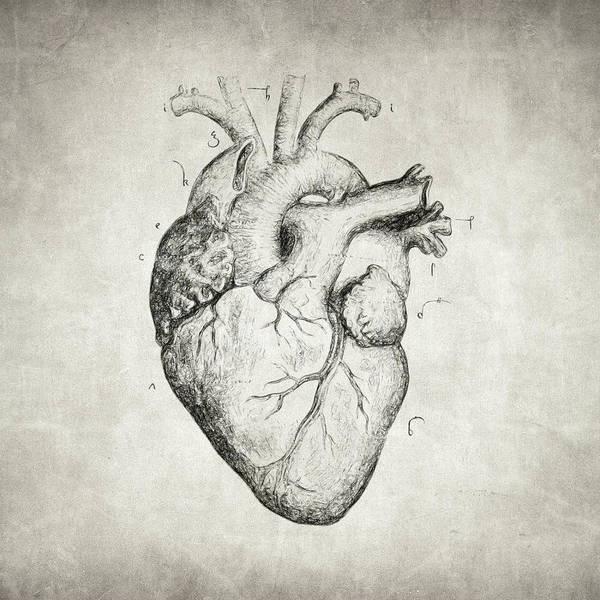 Wall Art - Drawing - Heart by Zapista Zapista