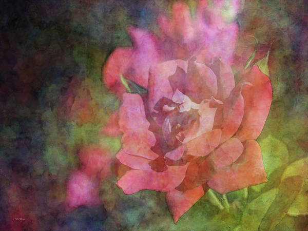 Photograph - Heart Throb 0683 Idp_2 by Steven Ward