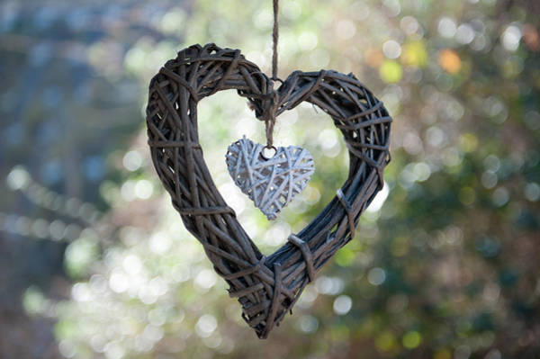 Photograph - Heart With A Heart by Helen Northcott