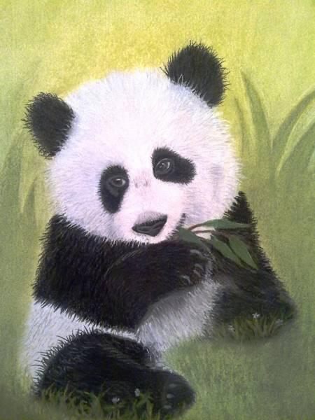 Panda Drawing Painting - Heartbreaker by Rosanna Maria
