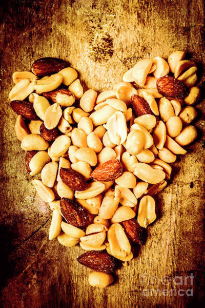 Foodstuff Photograph - Heath Nut by Jorgo Photography - Wall Art Gallery