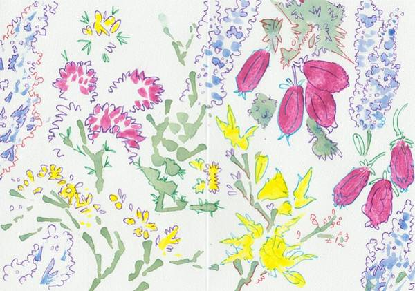Painting - Heather And Gorse Watercolor Illustration Pattern by Mike Jory