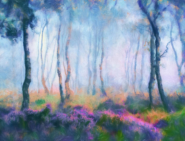 Fill Digital Art - Heather On A Misty Hill by Georgiana Romanovna