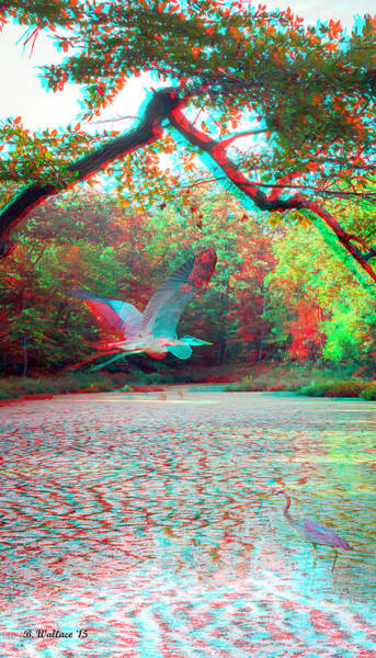 Stereoscopy Digital Art - Heaven For Herons - Use Red/cyan 3d Glasses by Brian Wallace