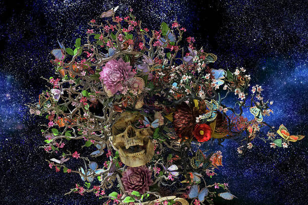 Dead Head Digital Art - Heaven Help The Fool by Betsy Knapp