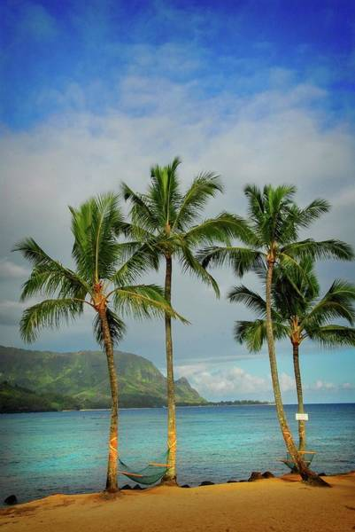 Photograph - Heaven In Hawaii by Lynn Bauer