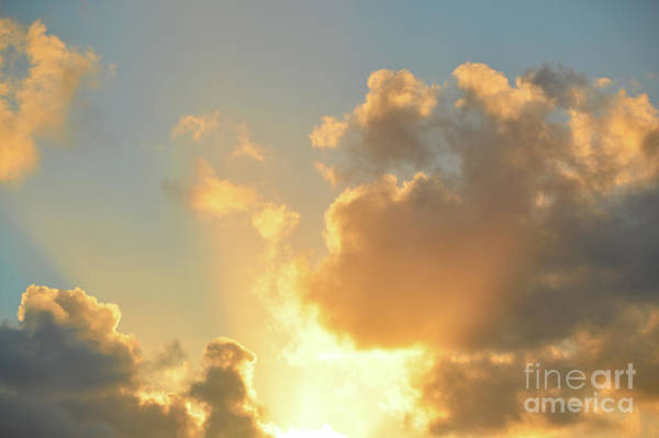 Photograph - Heavenly Light by Robyn King