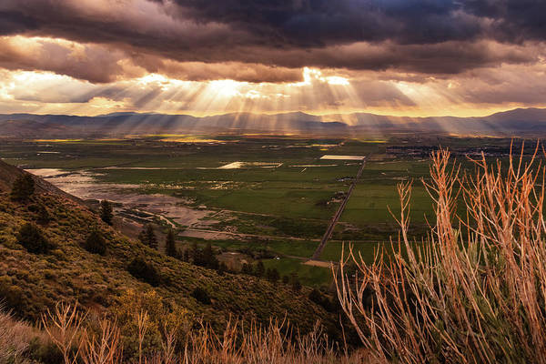 Lightroom Photograph - Heavenly Rays Of Spring Light by Mike Herron