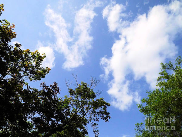 Photograph - Heavens Abstract Sky Art by Robyn King