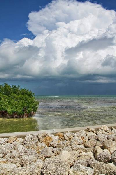Photograph - Heavy Clouds In Key West by Bob Slitzan