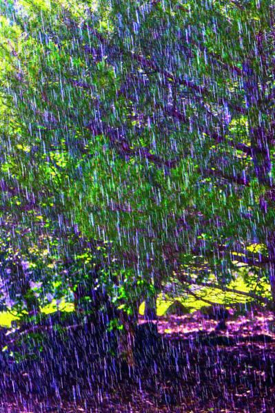 Wall Art - Photograph - Heavy Rainfall by Garry Gay