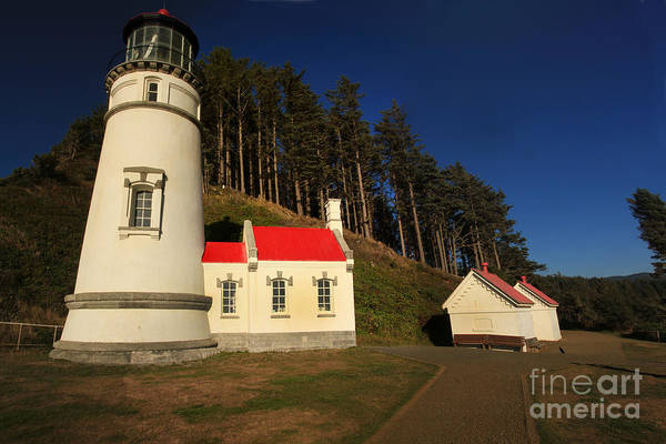 Photograph - Heceta Head Ligthouse, Oregon  Oct 4, 2015       Hecera Head Ligth by California Views Archives Mr Pat Hathaway Archives