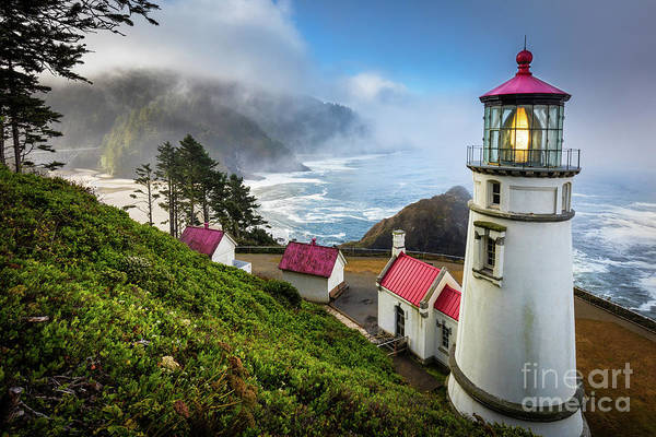 Wall Art - Photograph - Heceta Fog by Inge Johnsson
