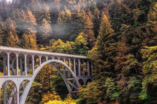 Photograph - Cape Creek Bridge by Bill Posner