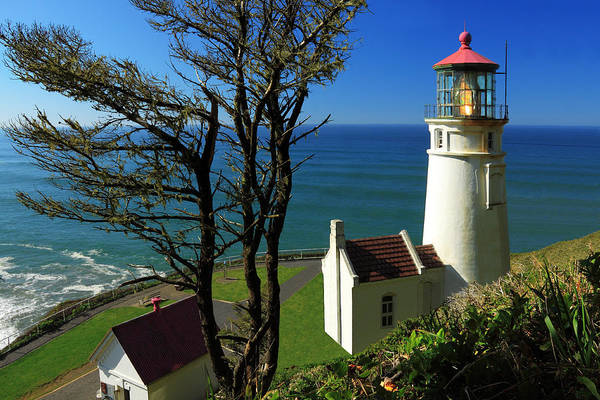 Photograph - Heceta Head Lighthouse by James Eddy
