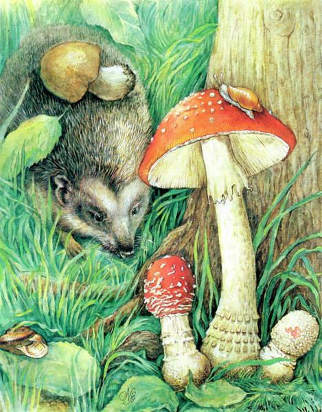 Guache Painting - Hedgehog by Natalie Berman