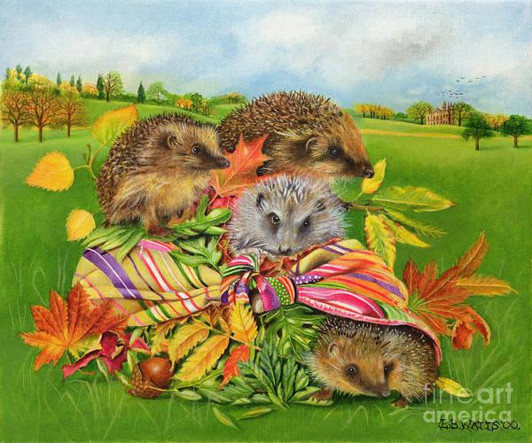 Acorn Wall Art - Painting - Hedgehogs Inside Scarf by EB Watts