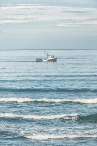 Photograph - Heidi Sue Fishing Boat by Tom Singleton